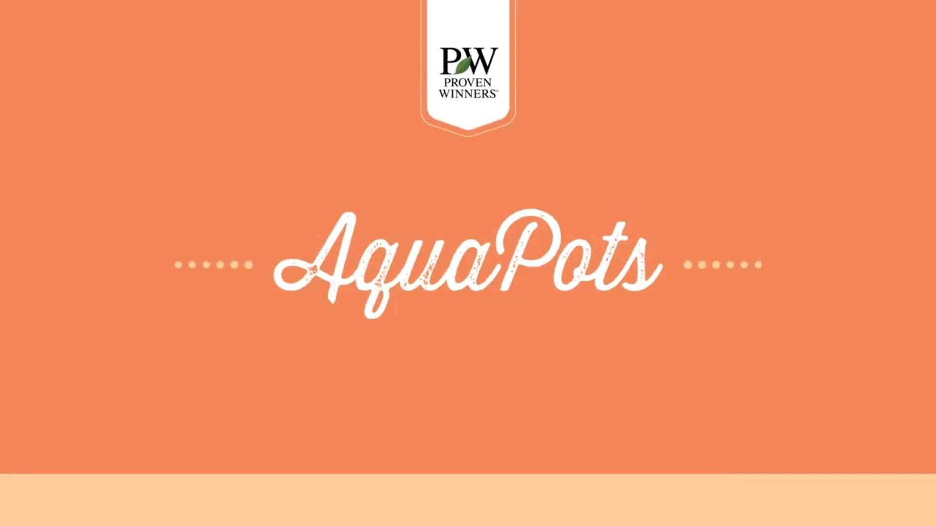 AquaPots for Garden Center Retailers // Proven Winners