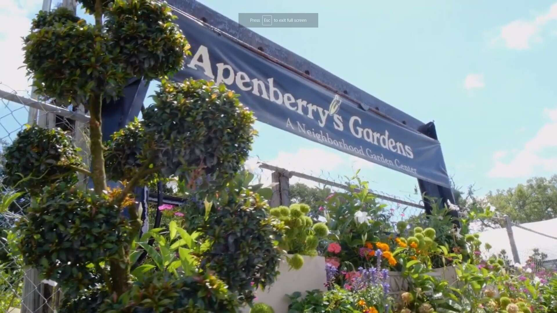 Appenberry's Gardens: A Proven Winners Store Within A Store // Proven Winners