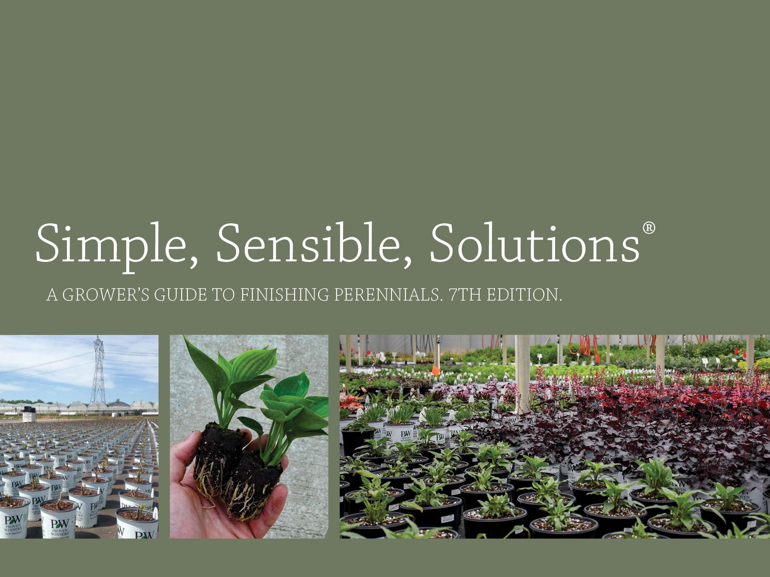Simple, Sensible, Solutions®