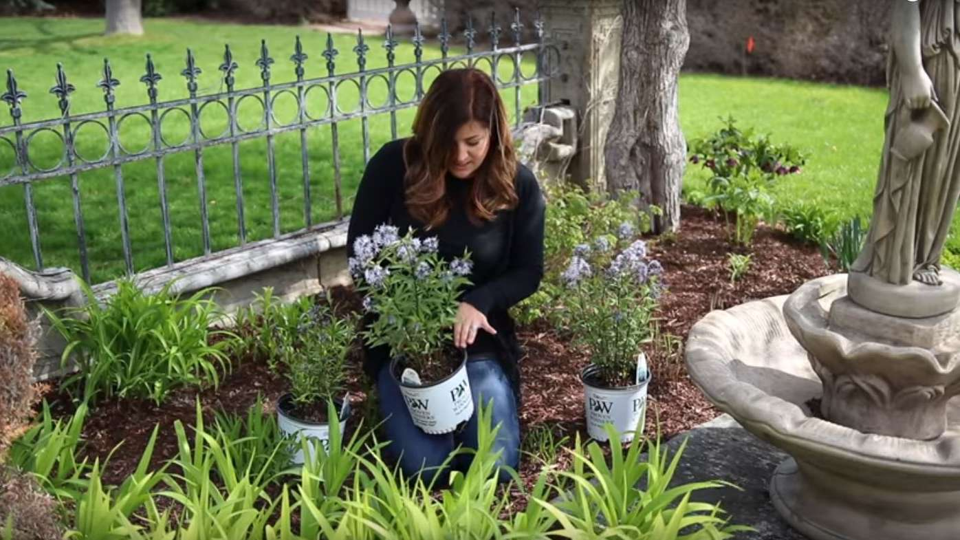 Planting A New Flowerbed Garden Answer Perennial Resource