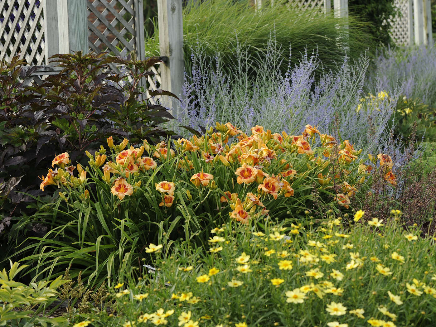 Eclectic Gardens Perennial Resource
